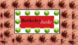Pension Life Blog - More negligence from trustees Berkeley Burke - Store First - More negligence from trustees Pension Life Blog Berkeley Burke - Store First
