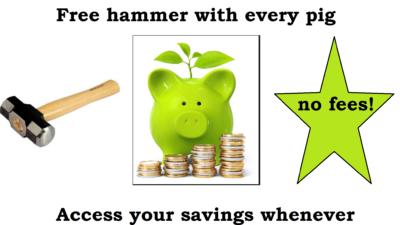 Long-Term Savings Pig