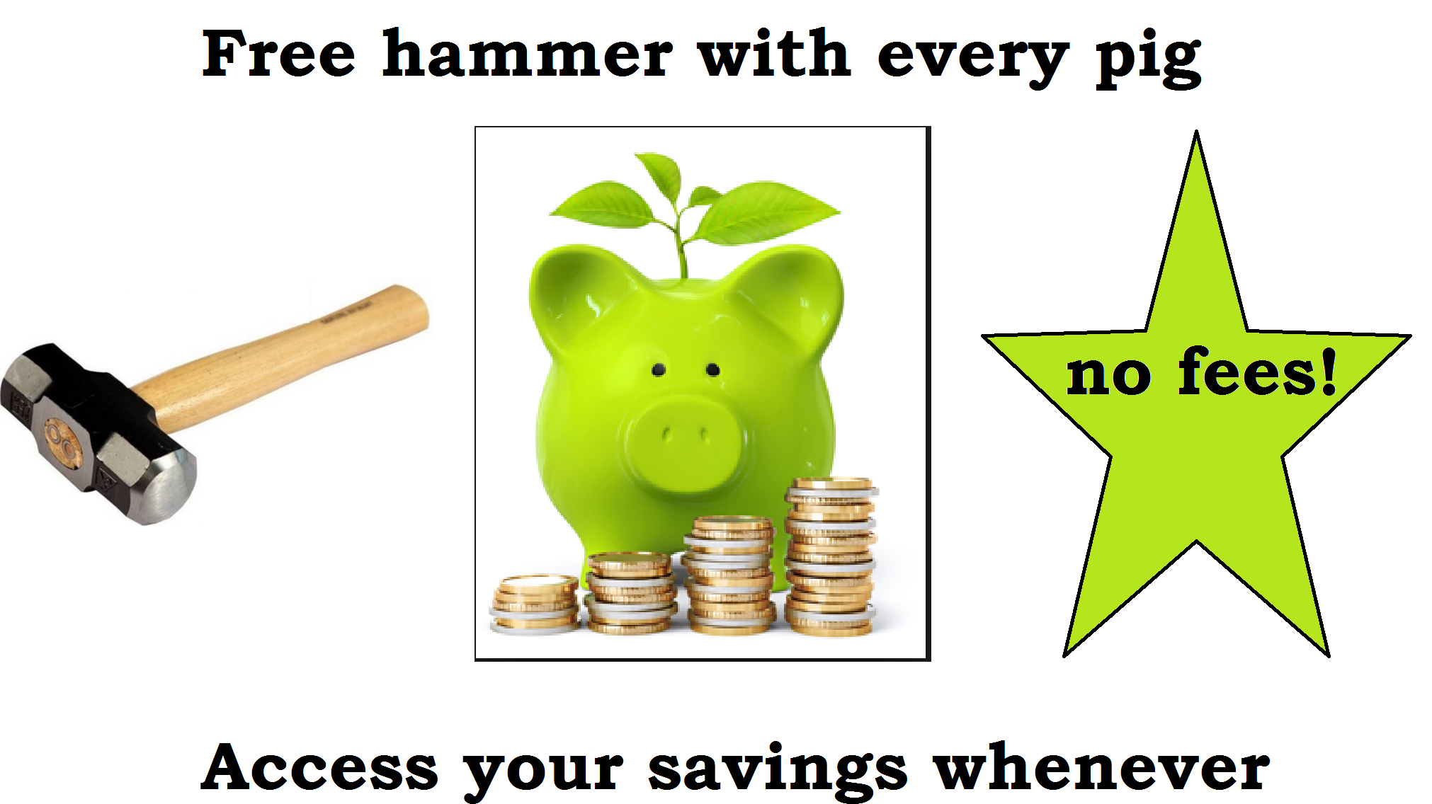 Savings Pig New