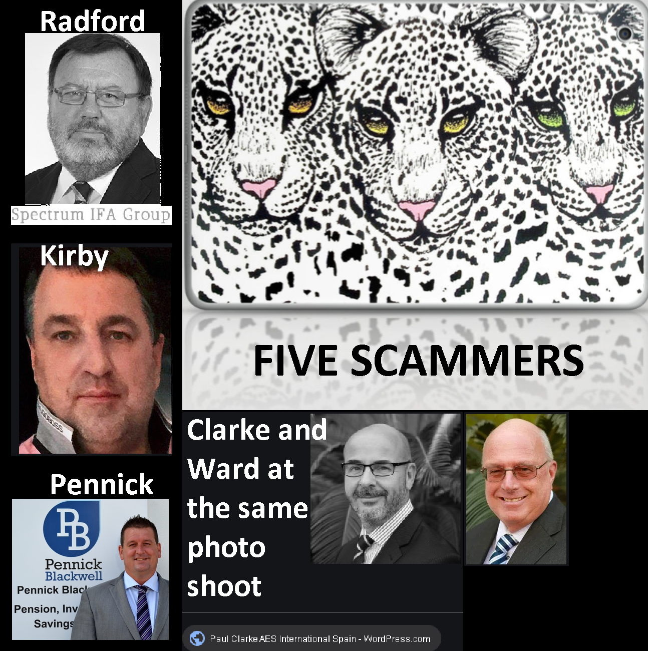 Leopards and Scammers 1