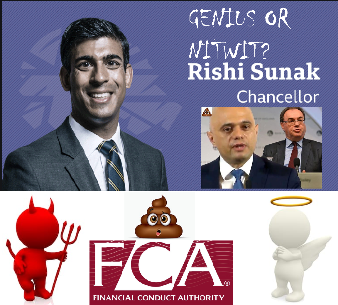 Rishi Sunak - genius or nitwit as the new chancellor?